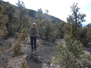 Xiaochun found the semiarid conifer zones of the Great Basin to be quite interesting.